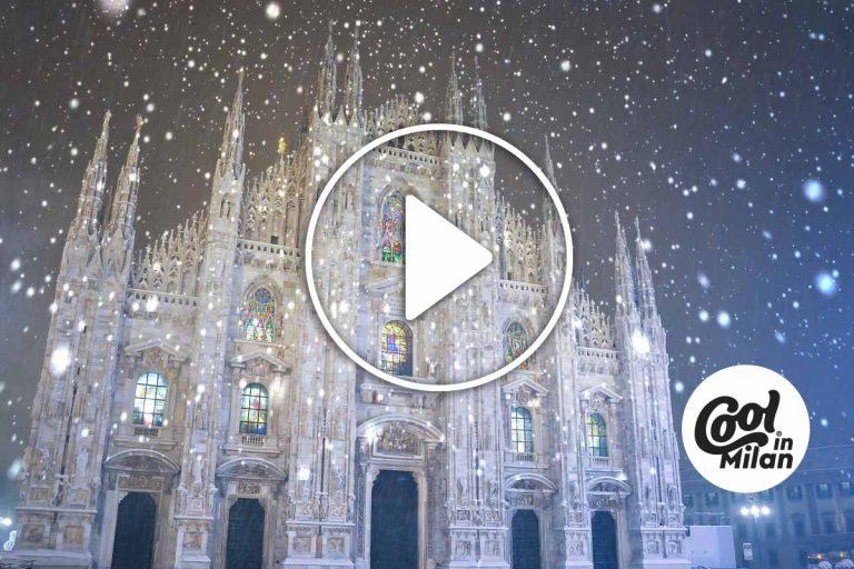Alberi Natale Milano