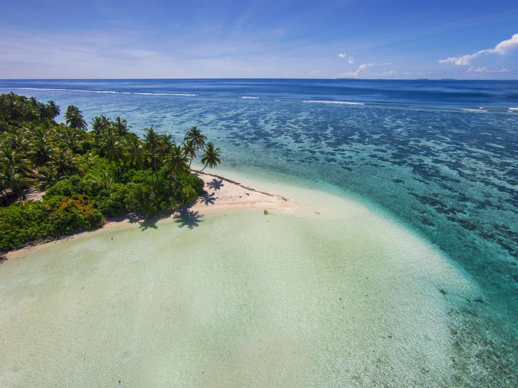 maldive ricerca