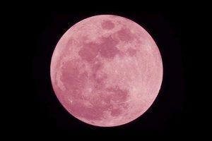 Nella notte fra 26 e 27 aprile 2021 potremo osservare la Superluna rosa