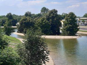 """Arriva a Milano """" Corvetto specchio d'acqua """", un giardino acquatico sospeso"""